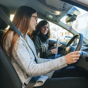 Driver Comfort Assessment